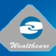 Wealthcare Securities Pvt. Ltd.  - Mutual Fund Advisor in Sohna