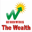 THE WEALTH  - Mutual Fund Advisor in Vadnagar