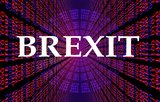 What does Brexit mean for Indian Investors in the medium term: Part 1