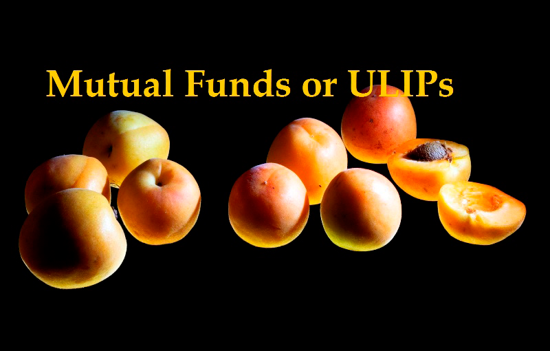 Mutual Funds article in Advisorkhoj - Mutual Funds or ULIPs: Where should you invest